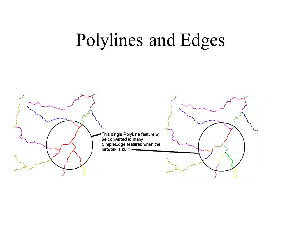 Polylines and Edges