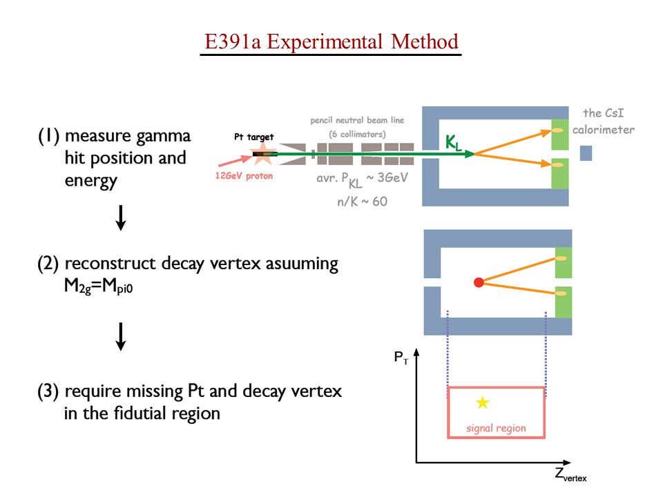 E391a Experimental Method