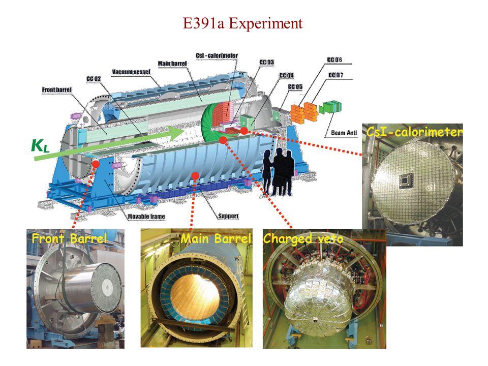 E391a Experiment