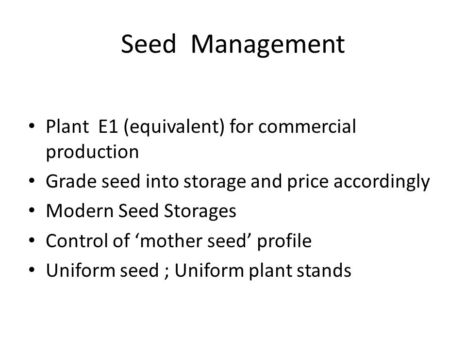 Seed Management Plant E1 (equivalent) for commercial production Grade seed into storage and price accordingly Modern Seed Storages Control of 'mother seed' profile Uniform seed ; Uniform plant stands