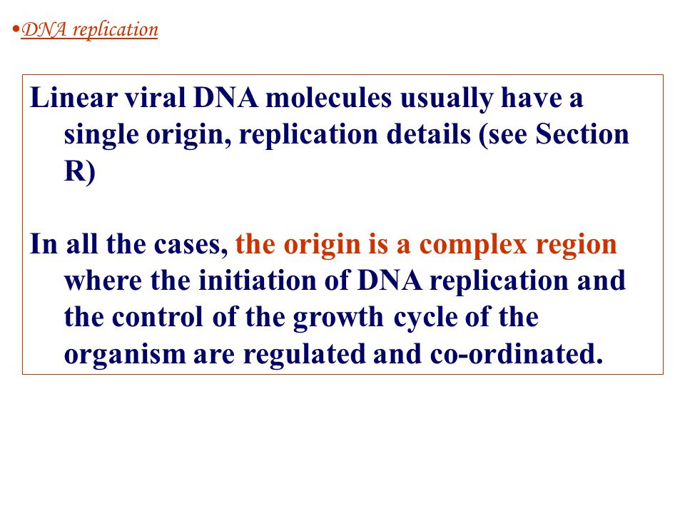 Linear viral DNA molecules usually have a single origin, replication details (see Section R) In all the cases, the origin is a complex region where th