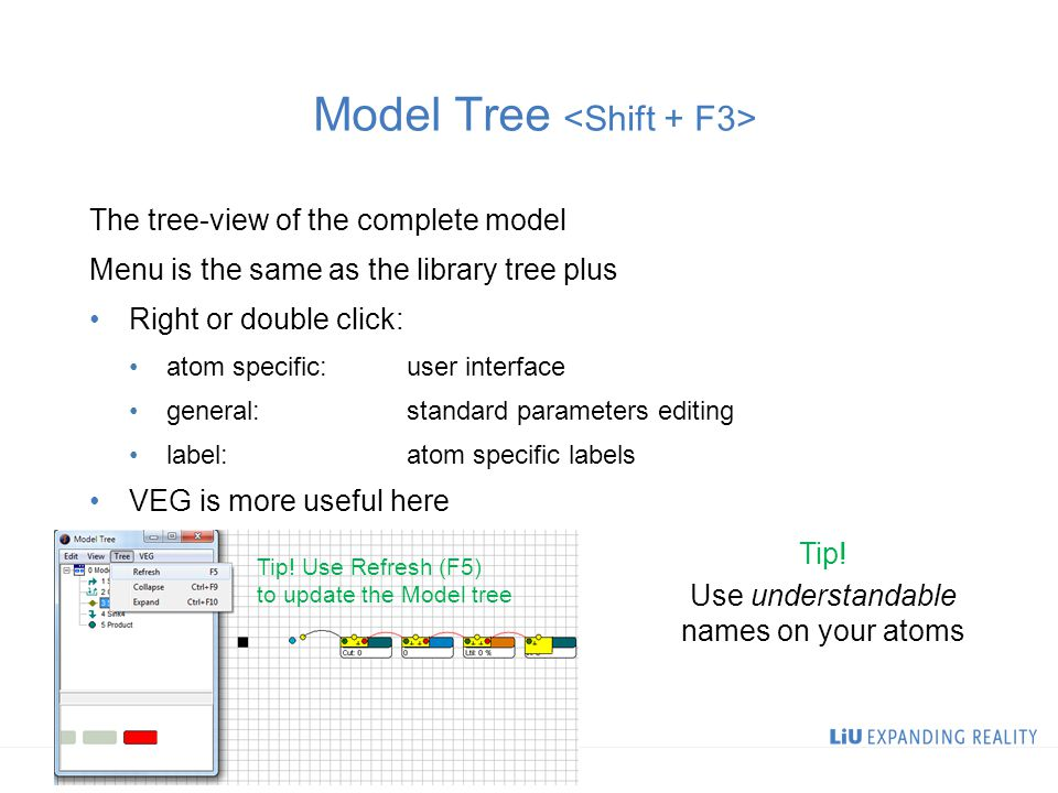 Model Tree The tree-view of the complete model Menu is the same as the library tree plus Right or double click: atom specific:user interface general:standard parameters editing label:atom specific labels VEG is more useful here Tip.