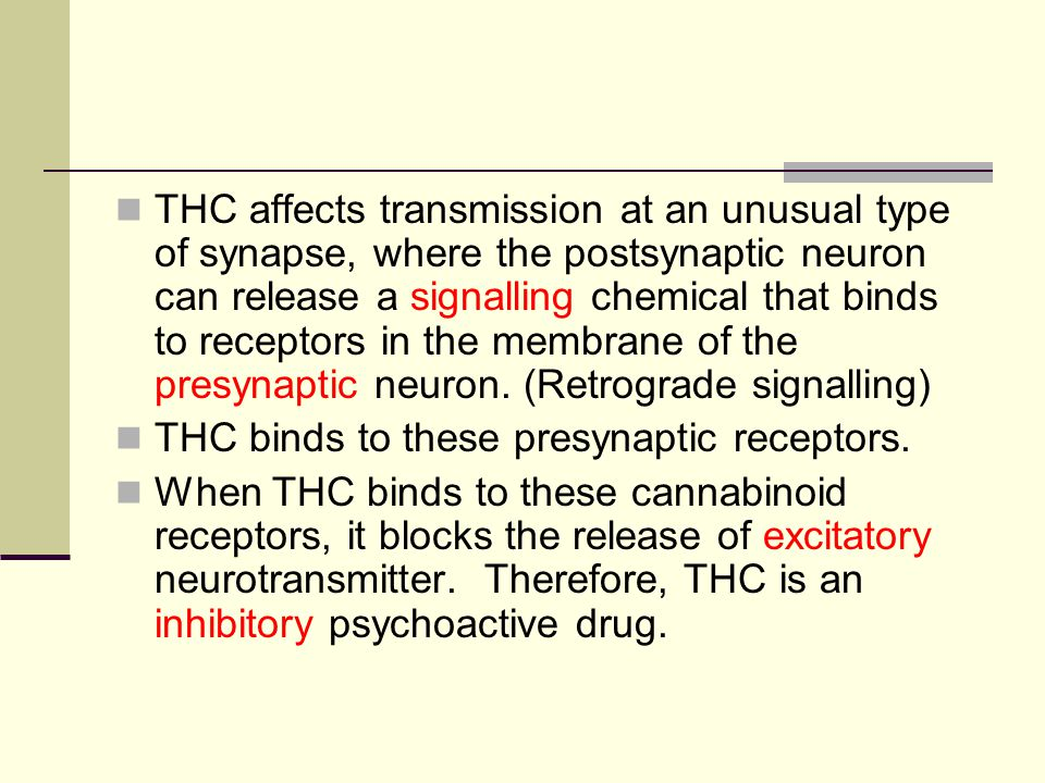 THC affects transmission at an unusual type of synapse, where the postsynaptic neuron can release a signalling chemical that binds to receptors in the