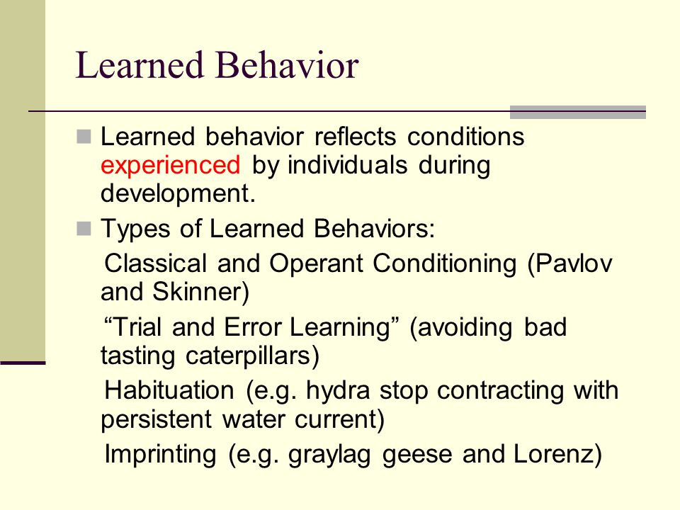 Learned Behavior Learned behavior reflects conditions experienced by individuals during development. Types of Learned Behaviors: Classical and Operant