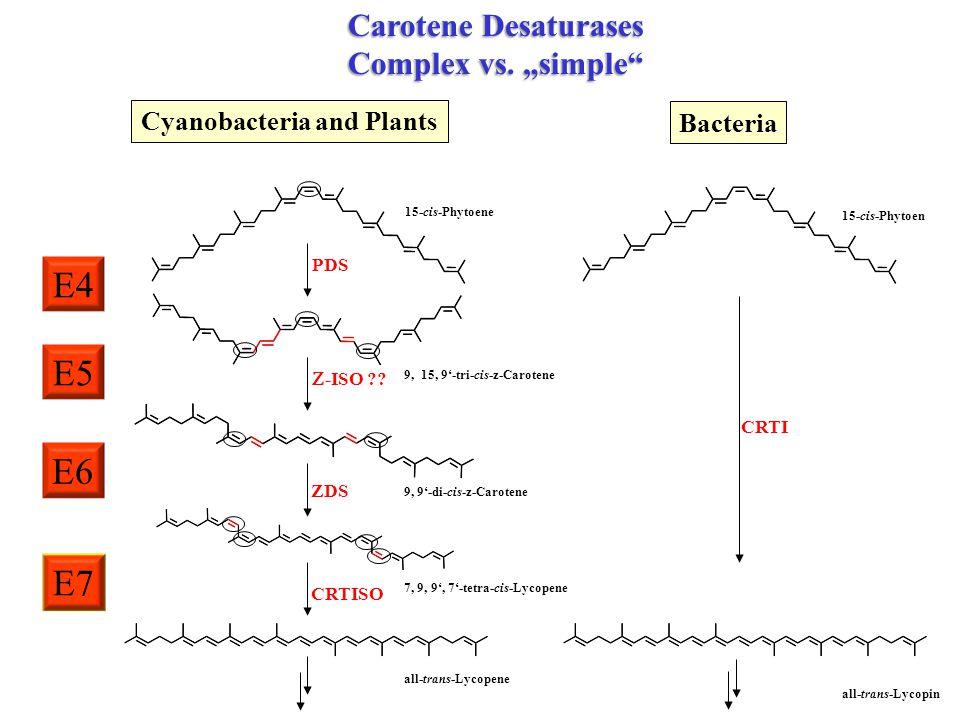 15-cis-Phytoene Cyanobacteria and Plants 7, 9, 9', 7'-tetra-cis-Lycopene ZDS 9, 9'-di-cis-z-Carotene  -ISO ?? 9, 15, 9'-tri-cis-z-Carotene PDS all-tr