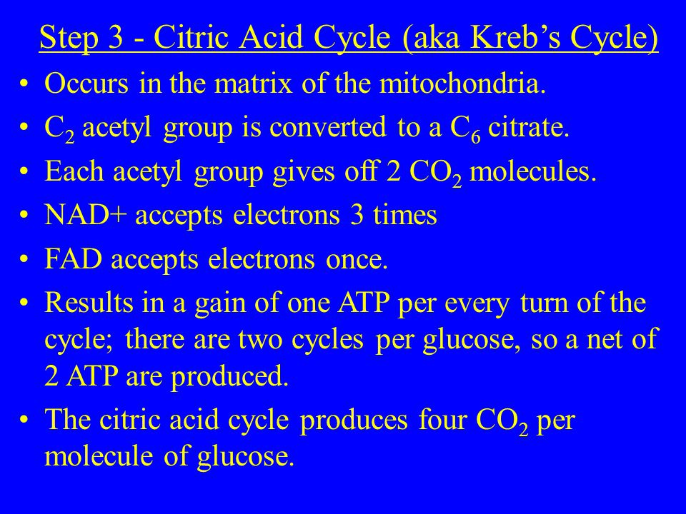 Step 3 - Citric Acid Cycle (aka Kreb's Cycle) Occurs in the matrix of the mitochondria.