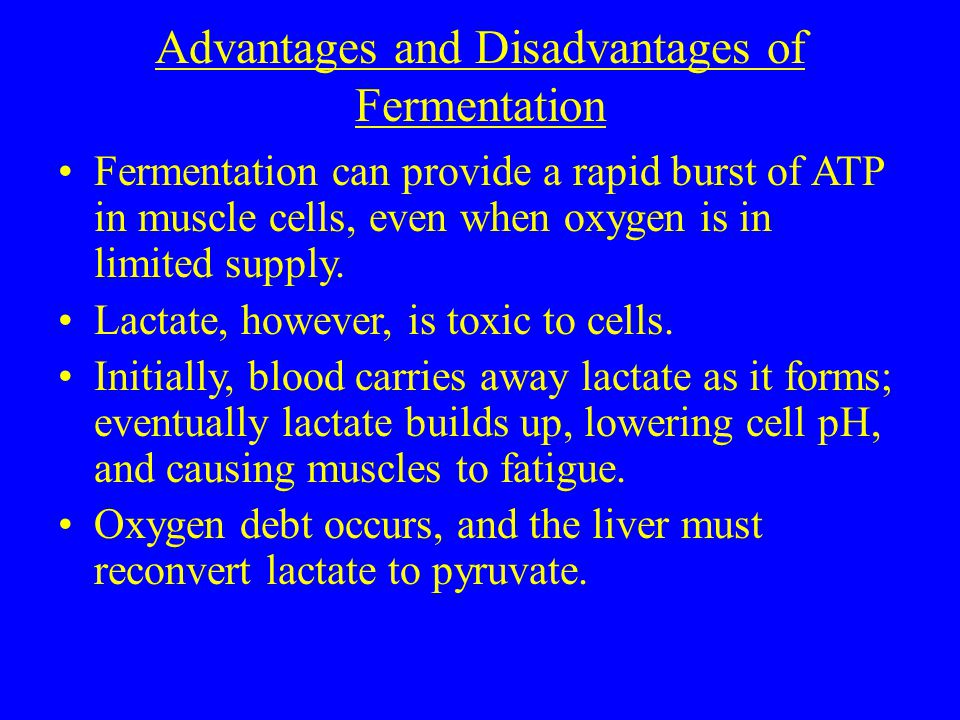 Advantages and Disadvantages of Fermentation Fermentation can provide a rapid burst of ATP in muscle cells, even when oxygen is in limited supply.