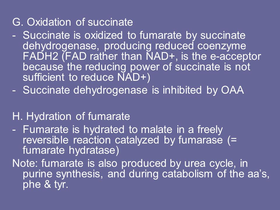 G. Oxidation of succinate -Succinate is oxidized to fumarate by succinate dehydrogenase, producing reduced coenzyme FADH2 (FAD rather than NAD+, is th