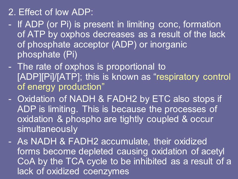 2. Effect of low ADP: -If ADP (or Pi) is present in limiting conc, formation of ATP by oxphos decreases as a result of the lack of phosphate acceptor