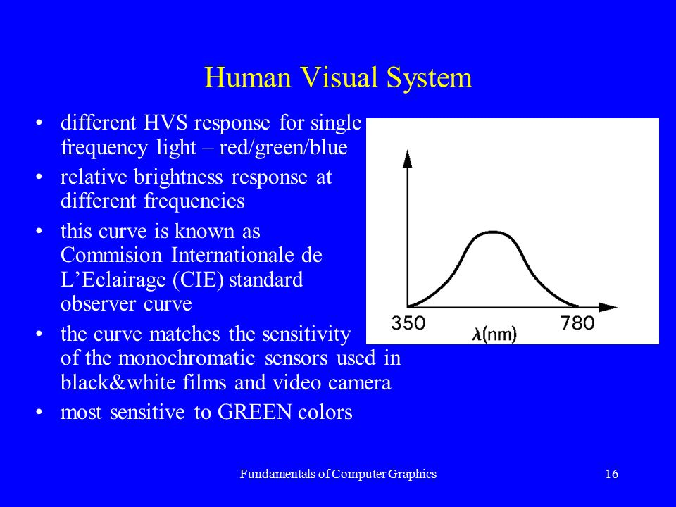 Fundamentals of Computer Graphics16 Human Visual System different HVS response for single frequency light – red/green/blue relative brightness respons