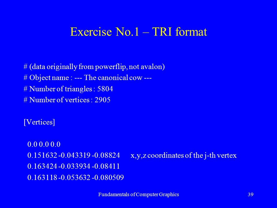 Fundamentals of Computer Graphics39 Exercise No.1 – TRI format # (data originally from powerflip, not avalon) # Object name : --- The canonical cow --