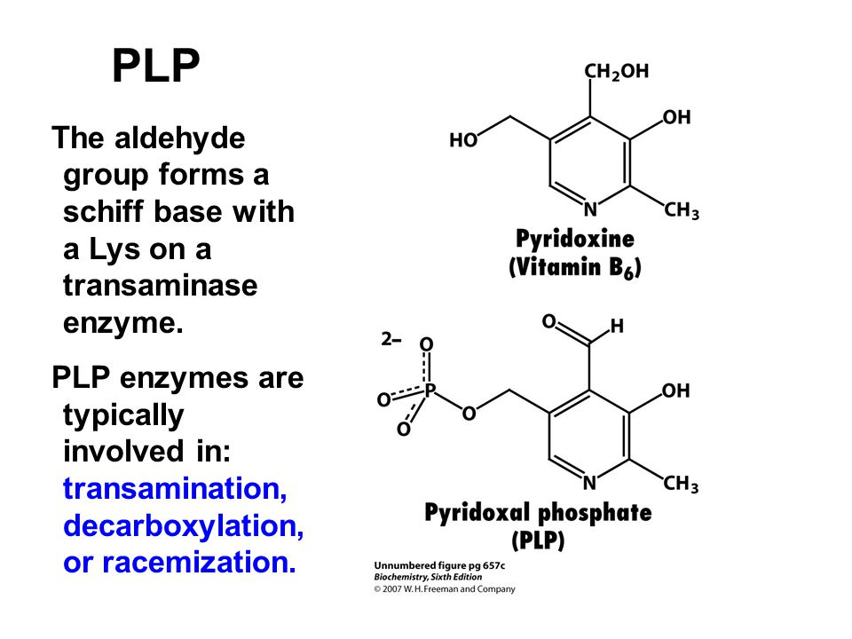 PLP The aldehyde group forms a schiff base with a Lys on a transaminase enzyme. PLP enzymes are typically involved in: transamination, decarboxylation
