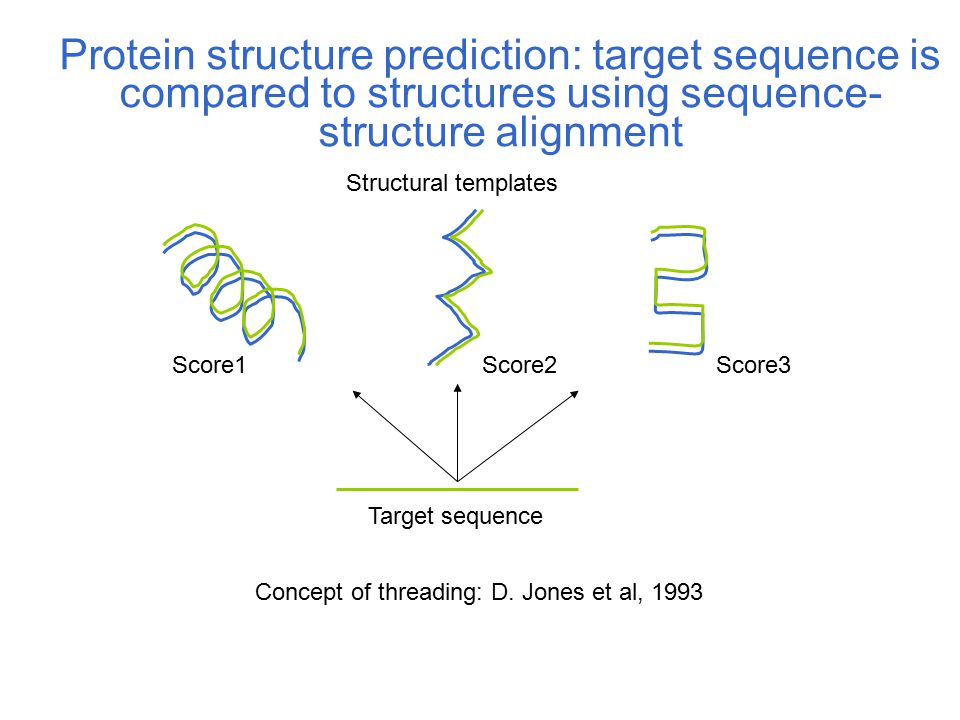 Target sequence Structural templates Score1Score2Score3 Protein structure prediction: target sequence is compared to structures using sequence- struct