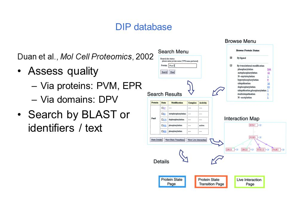 DIP database Duan et al., Mol Cell Proteomics, 2002 Assess quality –Via proteins: PVM, EPR –Via domains: DPV Search by BLAST or identifiers / text