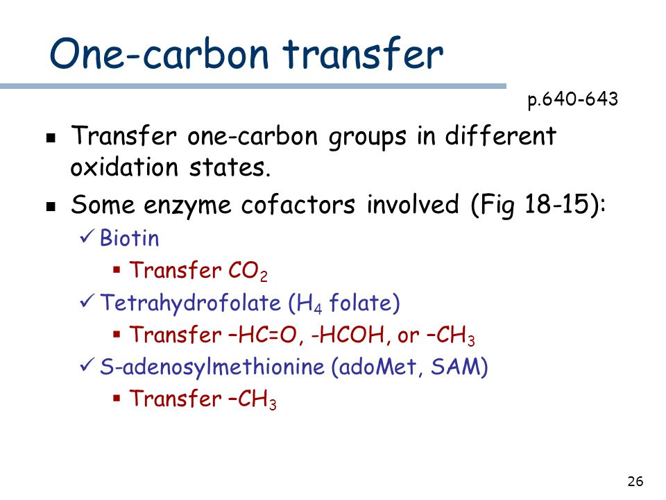 26 One-carbon transfer Transfer one-carbon groups in different oxidation states.