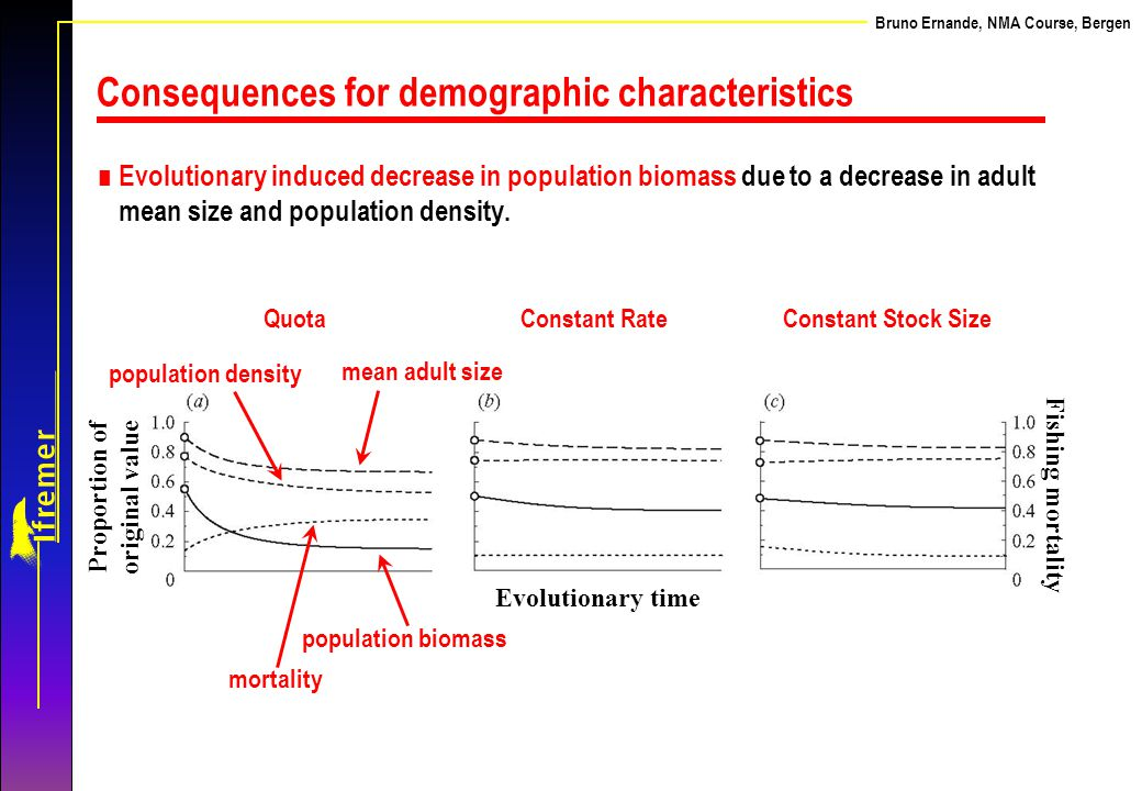 Bruno Ernande, NMA Course, Bergen Consequences for demographic characteristics ∎ Evolutionary induced decrease in population biomass due to a decrease