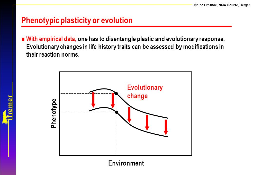 Bruno Ernande, NMA Course, Bergen Environment Phenotype Evolutionary change ∎ With empirical data, one has to disentangle plastic and evolutionary res