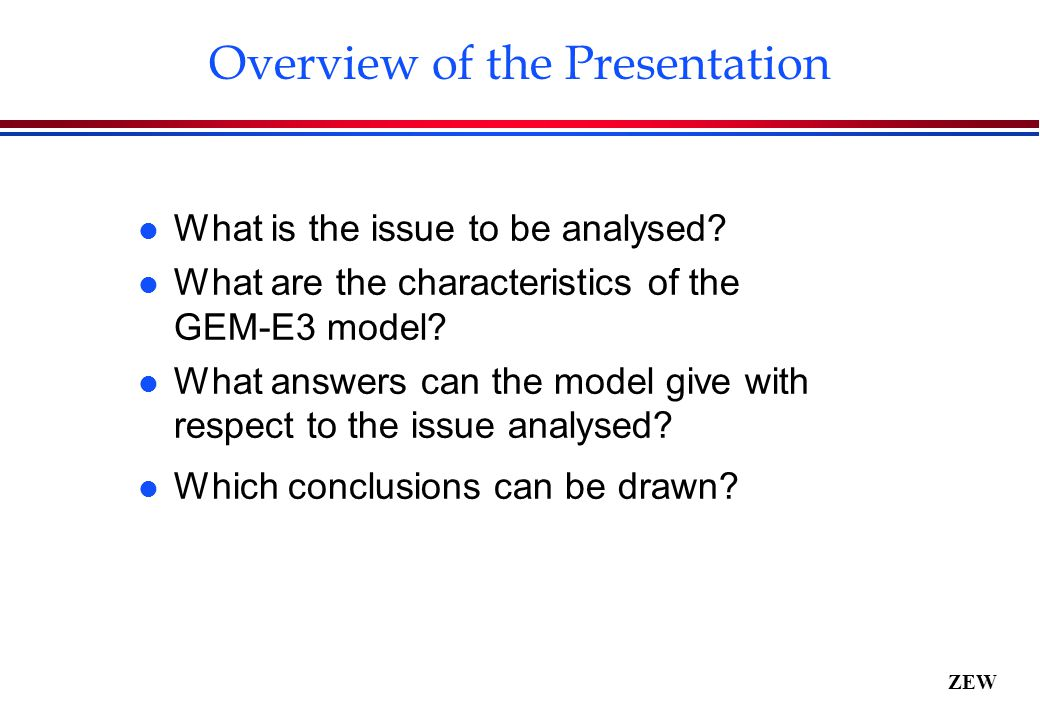 ZEW Overview of the Presentation l What is the issue to be analysed.
