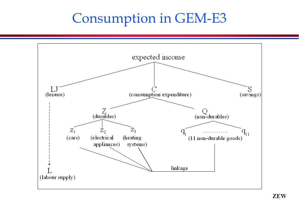 ZEW Consumption in GEM-E3