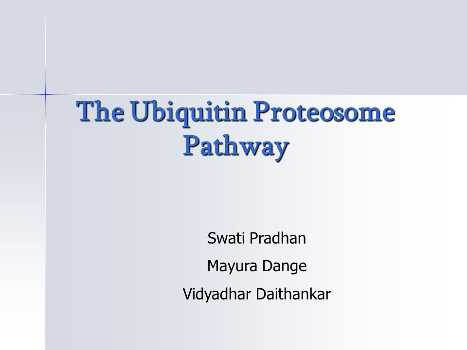  Ubiquitin proteasome pathway is ubiquitous & targets many processes and substrates.