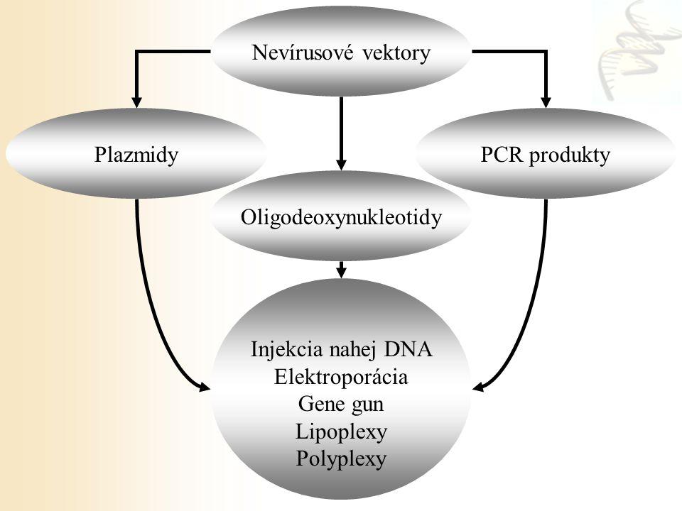 Nevírusové vektory PlazmidyPCR produkty Injekcia nahej DNA Elektroporácia Gene gun Lipoplexy Polyplexy Oligodeoxynukleotidy