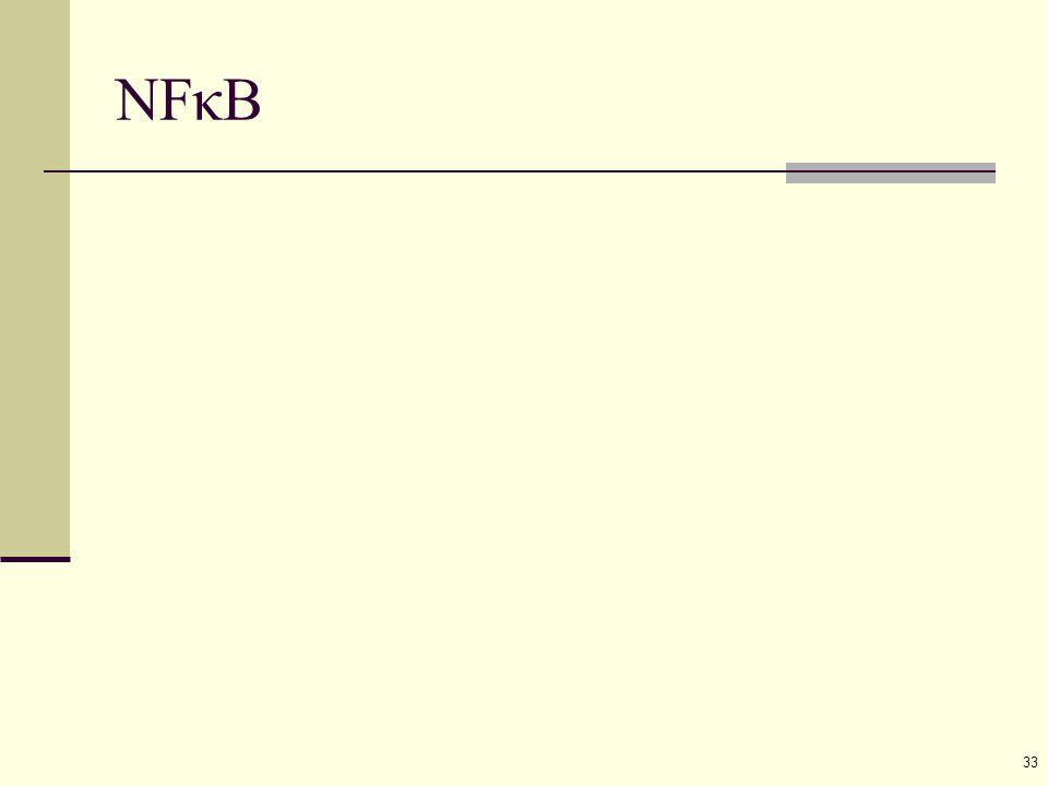 33 NFκB