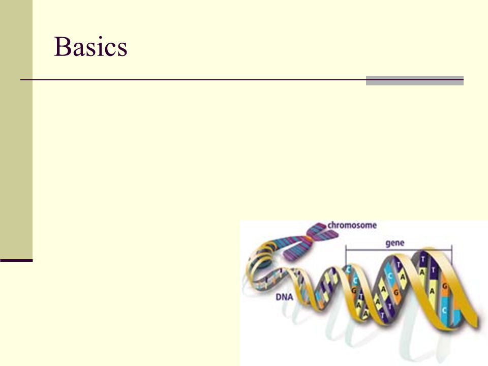 Princípy génovej terapie Náhrada génu