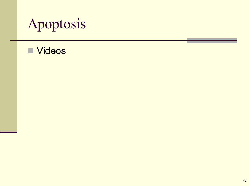 43 Apoptosis Videos