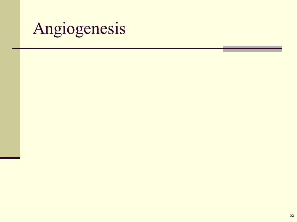 52 Angiogenesis