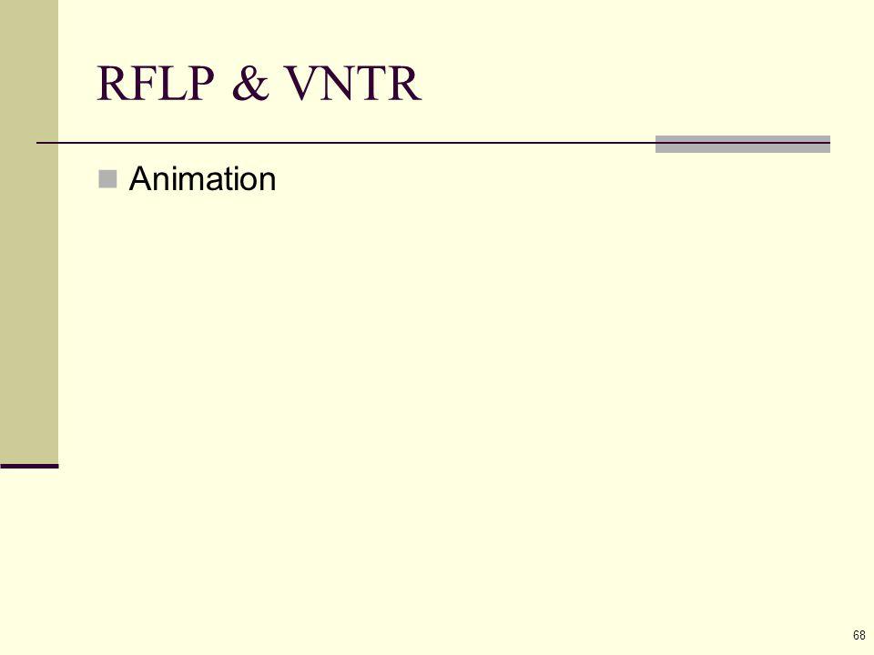 68 RFLP & VNTR Animation