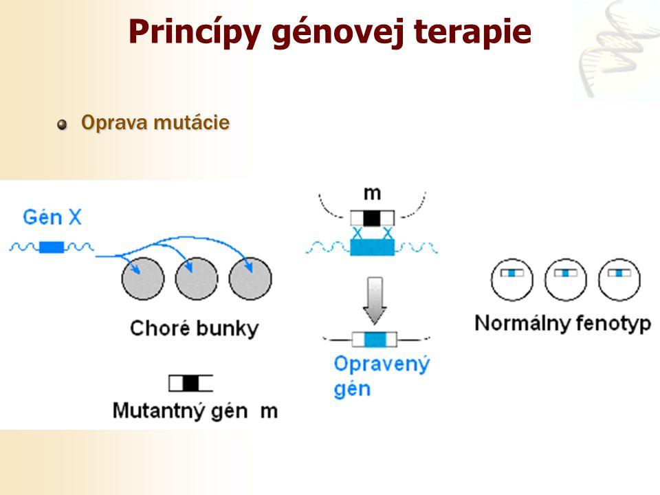 Princípy génovej terapie Oprava mutácie