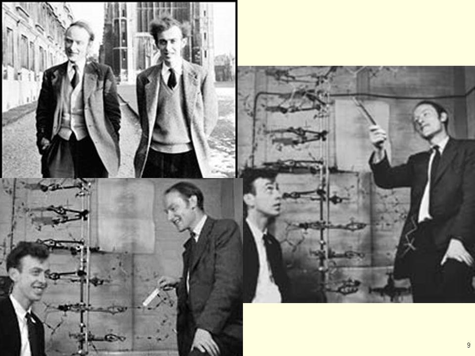 60 Kary Banks Mullis (1944 – ) Nobel prize 1993 – Chemistry