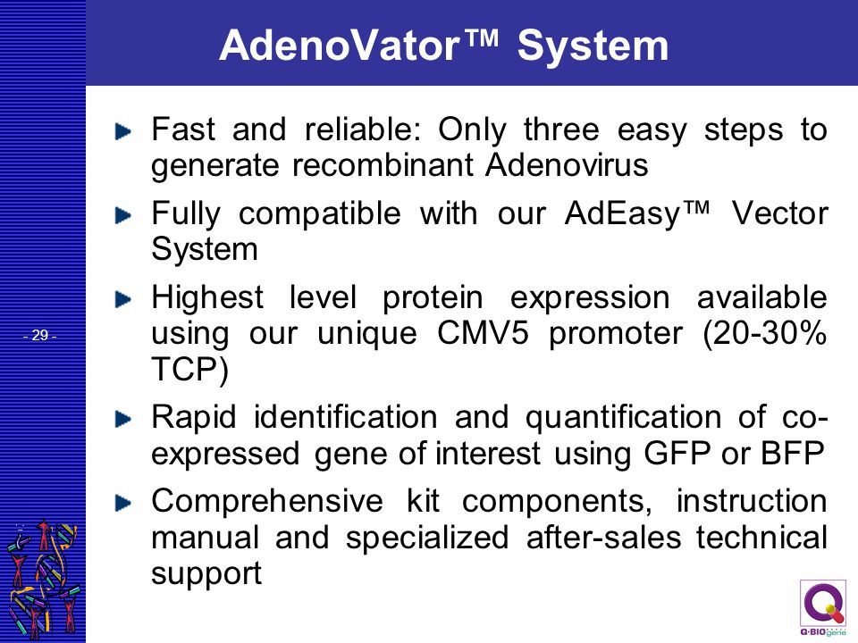 - 29 - AdenoVator™ System Fast and reliable: Only three easy steps to generate recombinant Adenovirus Fully compatible with our AdEasy™ Vector System