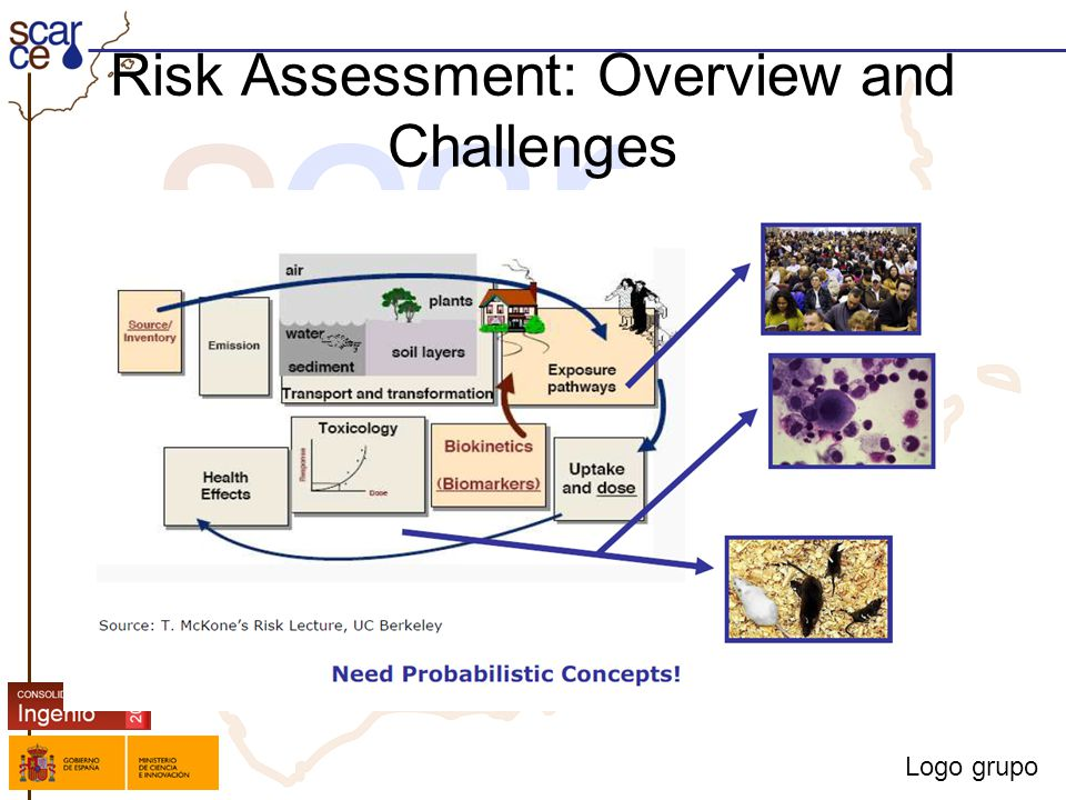 Logo grupo Risk Assessment: Overview and Challenges