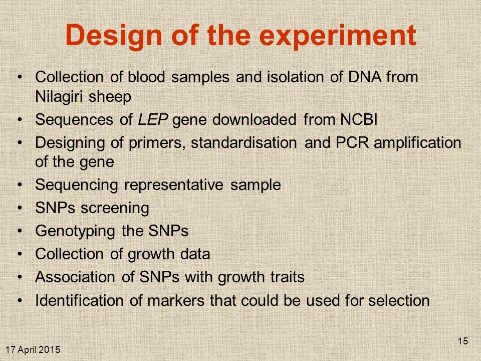 Collection of blood samples and isolation of DNA from Nilagiri sheep Sequences of LEP gene downloaded from NCBI Designing of primers, standardisation and PCR amplification of the gene Sequencing representative sample SNPs screening Genotyping the SNPs Collection of growth data Association of SNPs with growth traits Identification of markers that could be used for selection 17 April 2015 15