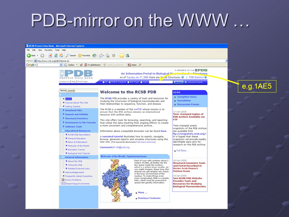 PDB-mirror on the WWW … e.g.1AE5