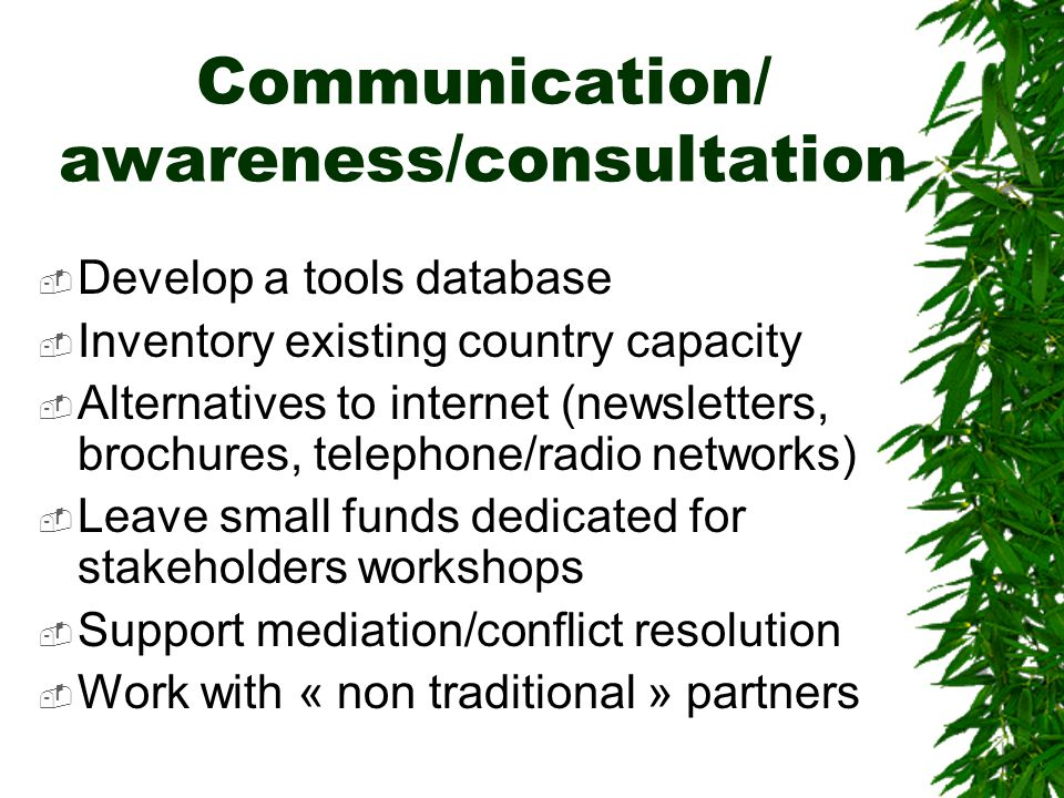 Communication/ awareness/consultation  Develop a tools database  Inventory existing country capacity  Alternatives to internet (newsletters, brochures, telephone/radio networks)  Leave small funds dedicated for stakeholders workshops  Support mediation/conflict resolution  Work with « non traditional » partners