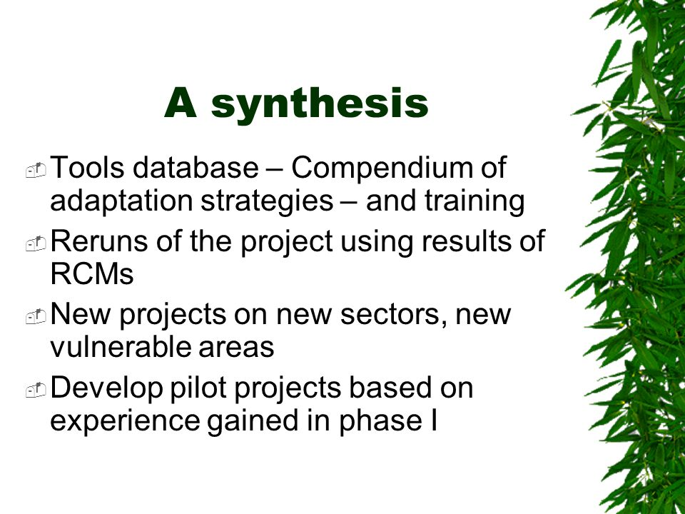 A synthesis  Tools database – Compendium of adaptation strategies – and training  Reruns of the project using results of RCMs  New projects on new
