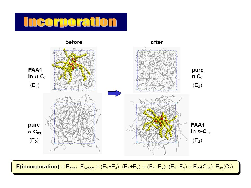 (E 1 ) beforeafter E(incorporation) = E after  E before = (E 3 +E 4 )  (E 1 +E 2 ) = (E 4  E 2 )  (E 1  E 3 ) = E int (C 31 )  E int (C 7 ) PAA1 in n-C 7 (E 2 ) pure n-C 31 (E 3 ) pure n-C 7 (E 4 ) PAA1 in n-C 31