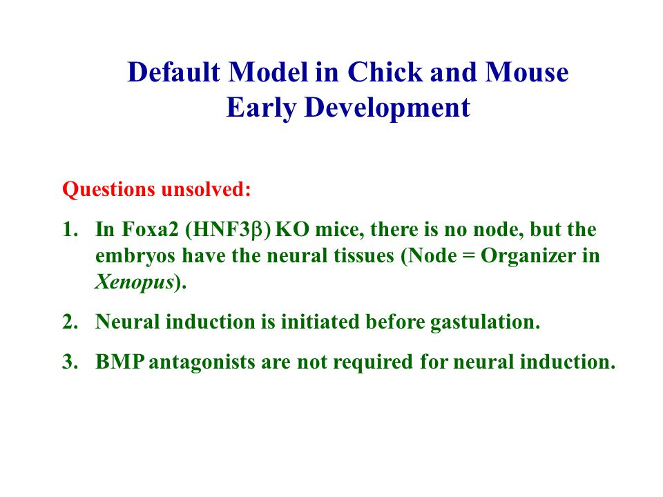Default Model in Chick and Mouse Early Development Questions unsolved: 1.In Foxa2 (HNF3  KO mice, there is no node, but the embryos have the neural