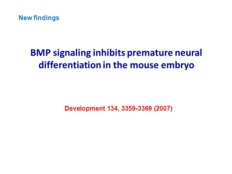 BMP signaling inhibits premature neural differentiation in the mouse embryo Development 134, 3359-3369 (2007) New findings