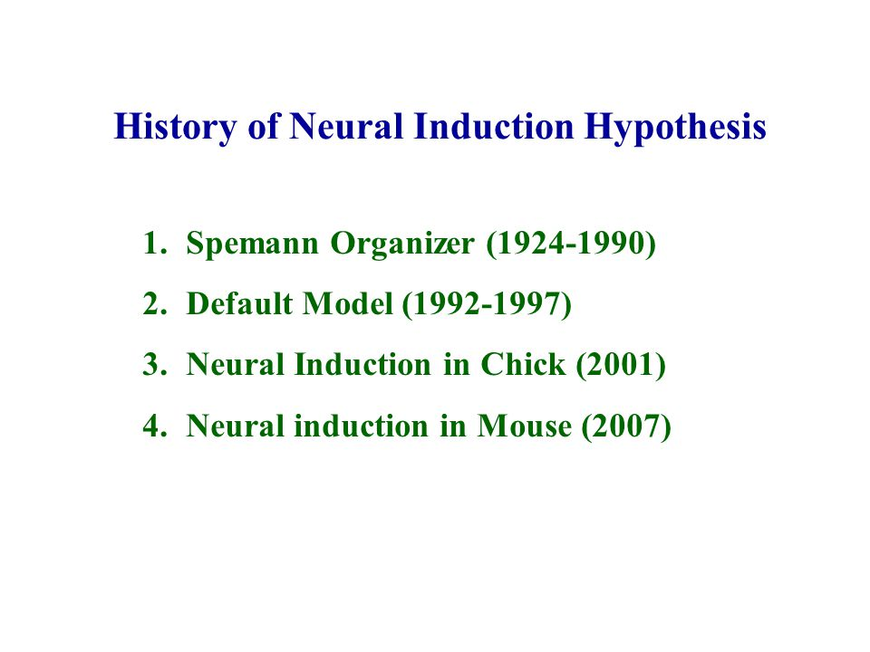 History of Neural Induction Hypothesis 1.Spemann Organizer (1924-1990) 2.Default Model (1992-1997) 3.Neural Induction in Chick (2001) 4.Neural inducti