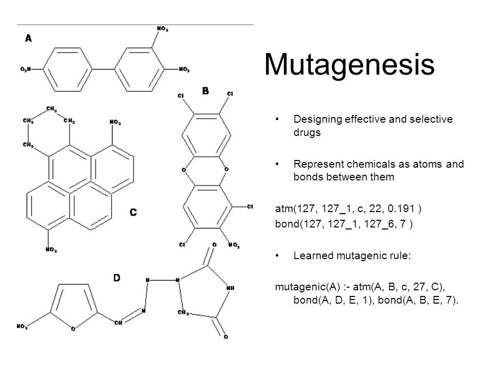 Mutagenesis Designing effective and selective drugs Represent chemicals as atoms and bonds between them atm(127, 127_1, c, 22, 0.191 ) bond(127, 127_1