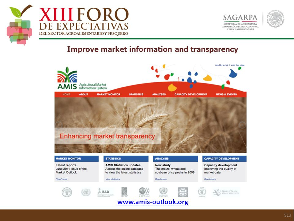 www.amis-outlook.org Improve market information and transparency S13