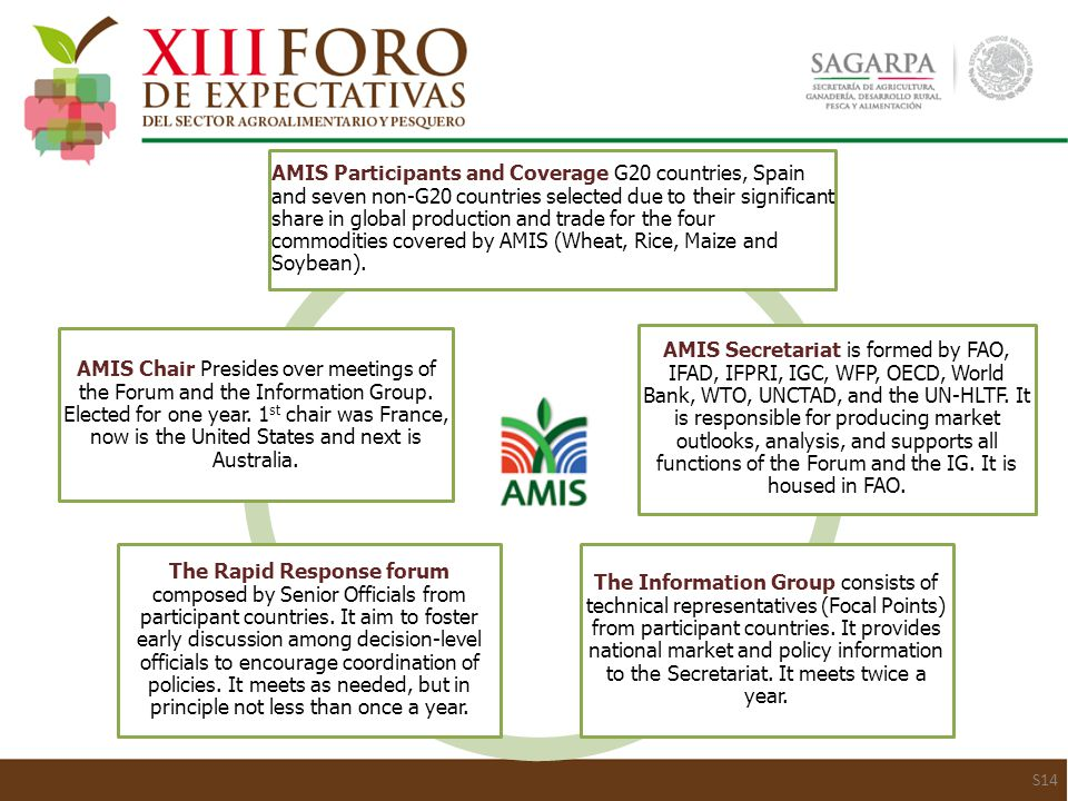 S14 AMIS Participants and Coverage G20 countries, Spain and seven non-G20 countries selected due to their significant share in global production and trade for the four commodities covered by AMIS (Wheat, Rice, Maize and Soybean).