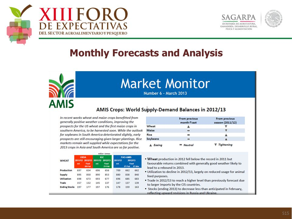 Monthly Forecasts and Analysis S15