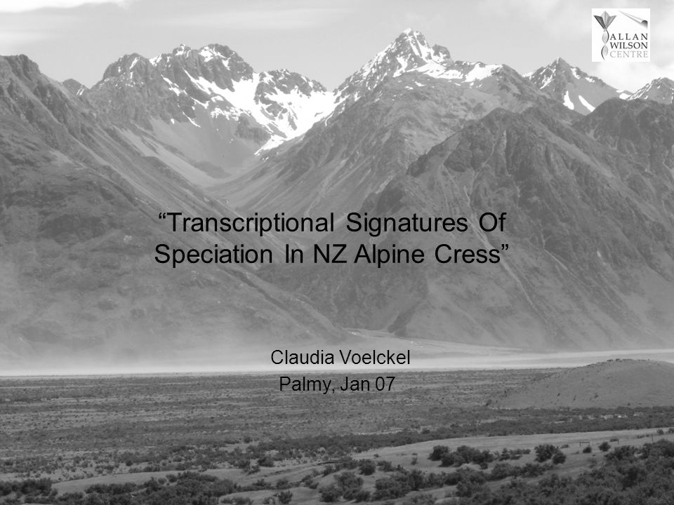 Transcriptional Signatures Of Speciation In NZ Alpine Cress Palmy, Jan 07 Claudia Voelckel