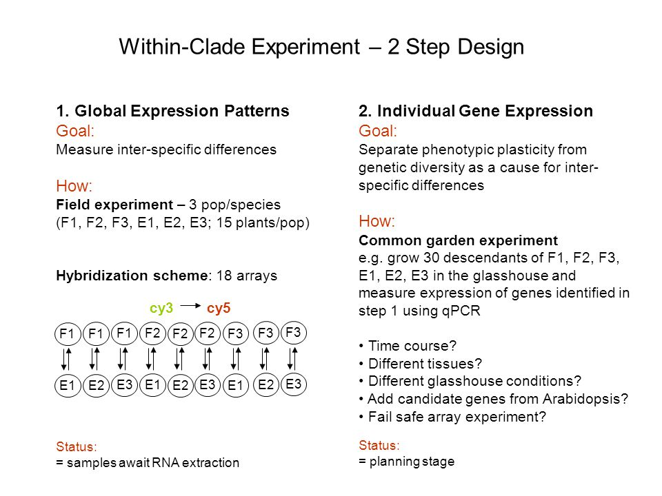 1. Global Expression Patterns Goal: Measure inter-specific differences How: Field experiment – 3 pop/species (F1, F2, F3, E1, E2, E3; 15 plants/pop) H
