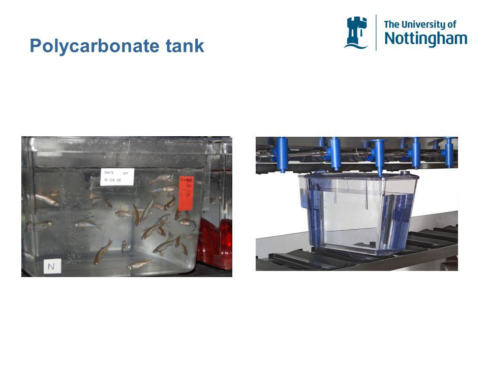 Polycarbonate tank