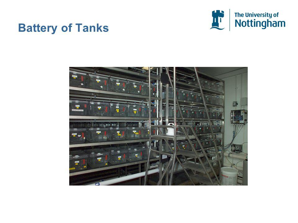 Battery of Tanks